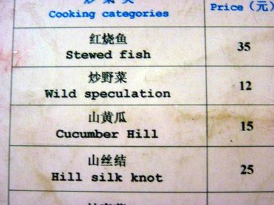 wild_speculation