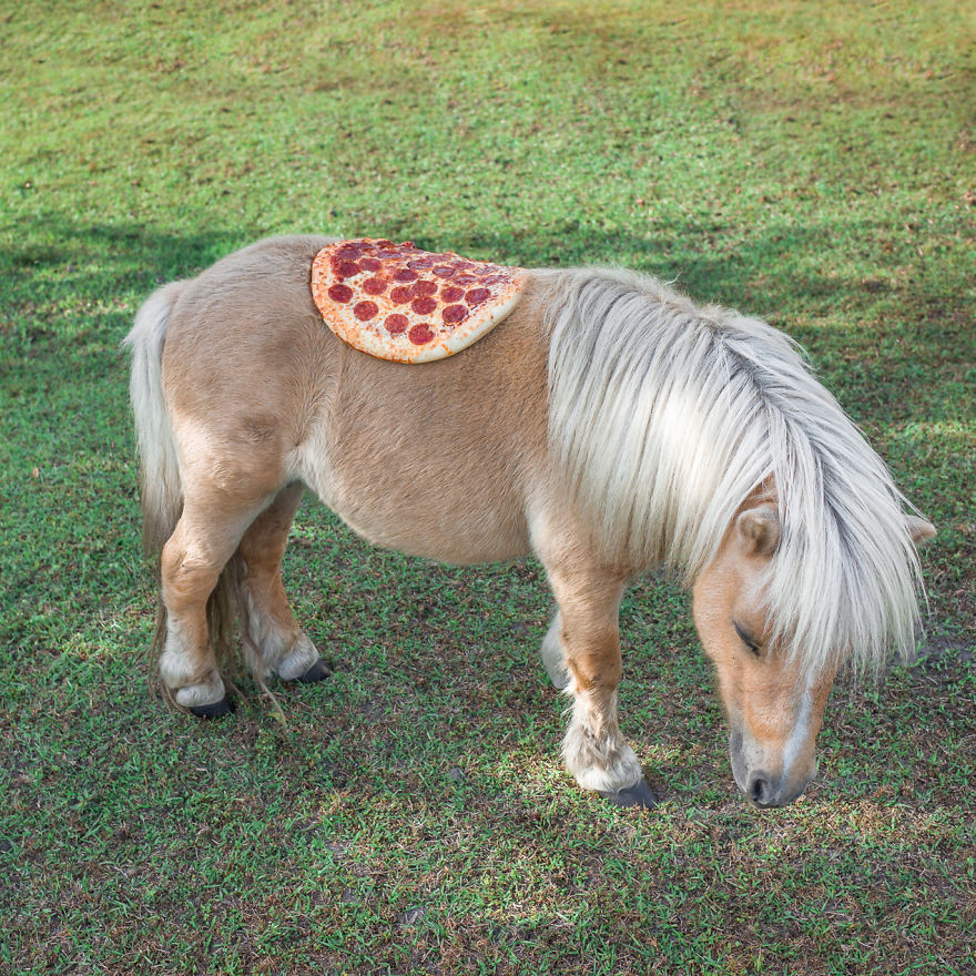 Pizza-in-the-Wild2__880
